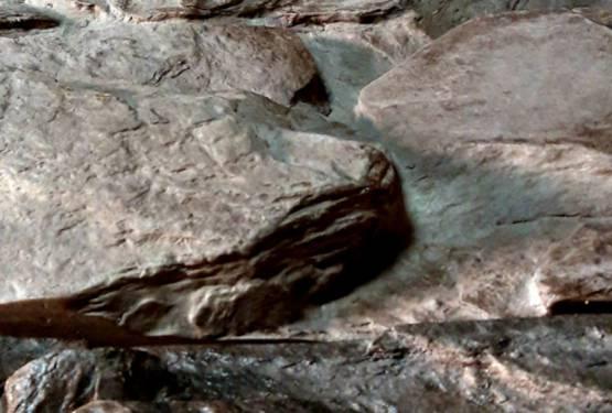 Kamień dekoracyjny na ścianę – wzory i kolory.